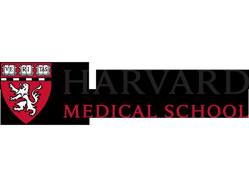 Стажировка в Гарвардской медицинской школе